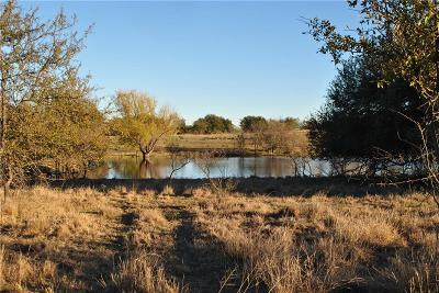 Comanche Farm & Ranch For Sale: 1425 Haven Dr Drive