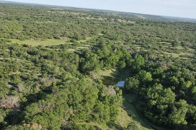 Mills County Farm & Ranch For Sale: 110 S County Road 319