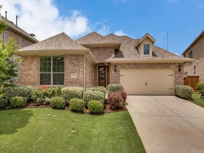 McKinney Single Family Home For Sale: 4704 El Paso Street