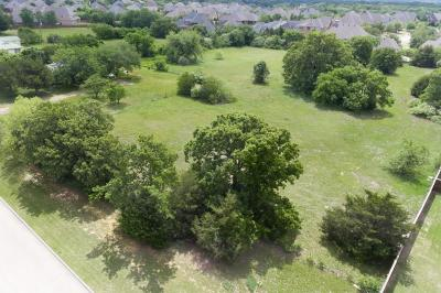 Colleyville Residential Lots & Land For Sale: 805 W Murphy Road