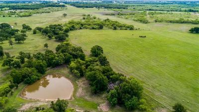 Millsap Farm & Ranch For Sale: Tbd Cool Junction Road
