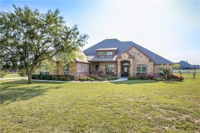 Aledo Single Family Home For Sale: 150 Rockhouse Drive