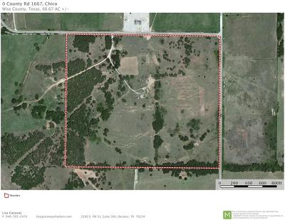 Wise County Farm & Ranch For Sale: County Rd 1667