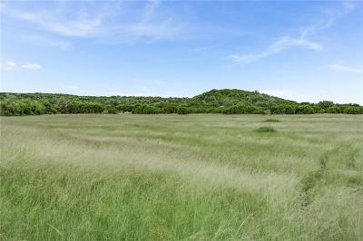 Hamilton County Farm & Ranch For Sale: 14475 E Fm 219
