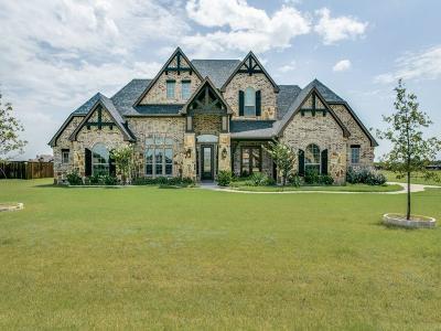 Midlothian Single Family Home For Sale: 6030 Plainview Road