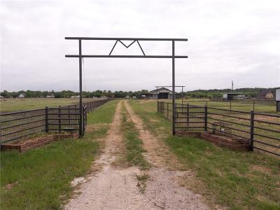 Mineral Wells Farm & Ranch For Sale: 2701 Mh 379