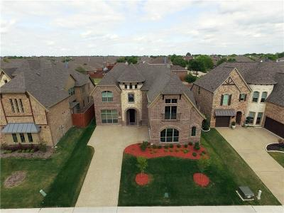 Allen Single Family Home For Sale: 1606 Boyle Parkway