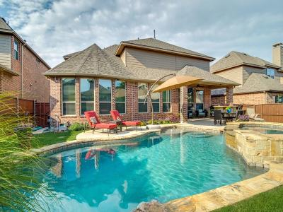 McKinney Single Family Home For Sale: 6313 Biltmore Lane