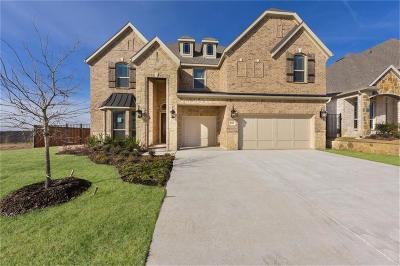 Fort Worth Single Family Home For Sale: 9905 La Frontera Drive