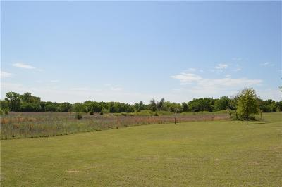 Springtown Residential Lots & Land For Sale: 1405 Jay Bird Road