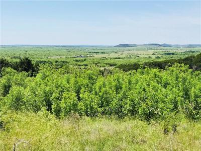 Graford Residential Lots & Land For Sale: 1041 Raven Circle