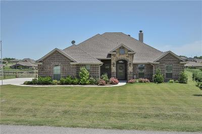 Weatherford Single Family Home For Sale: 1059 Dominique Drive