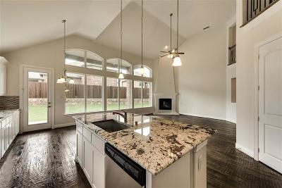 Plano Single Family Home For Sale: 6505 Oceanview Drive