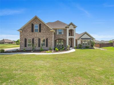 Parker County Single Family Home For Sale: 121 Mearl Court