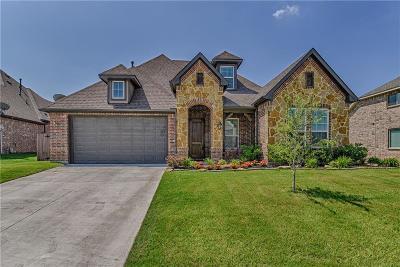 Arlington Single Family Home For Sale: 5104 Santa Rosa Drive