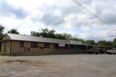 Mineral Wells Commercial For Sale: 2502 S Hwy 281