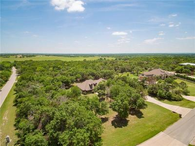 Parker County Single Family Home For Sale: 101 Duke Trail