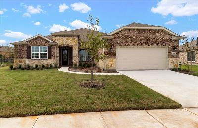Frisco Single Family Home For Sale: 1949 Vista Creek Drive