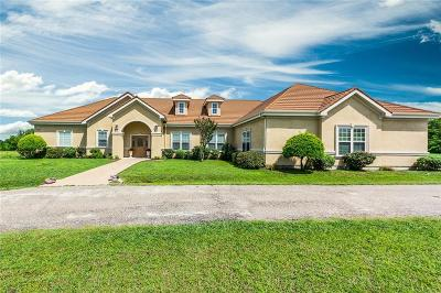 Single Family Home For Sale: 12110 County Road 132
