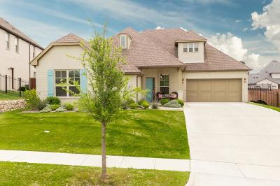 Aledo Single Family Home For Sale: 202 Parkview Drive