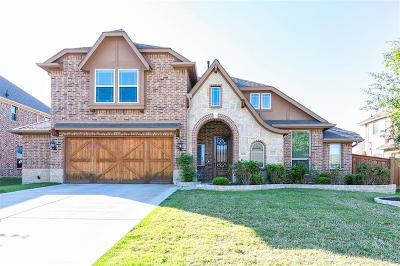 Grand Prairie Single Family Home For Sale: 3108 Paseo