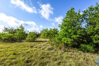 Stephenville Residential Lots & Land For Sale: Tbd County Road 456