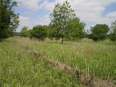 Millsap Farm & Ranch For Sale: 19.68 Ac Brazos Rock Road