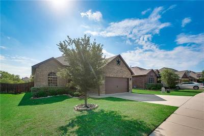 Fort Worth TX Single Family Home For Sale: $315,000
