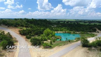 Santo Farm & Ranch For Sale: Tbd A6 Capstone Ridge Drive Road