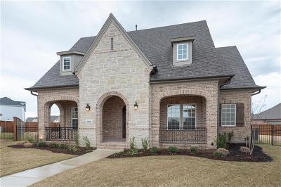 Frisco Single Family Home For Sale: 3900 Killian Court