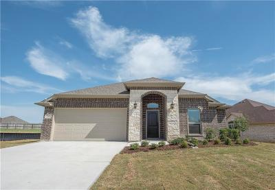 Parker County Single Family Home For Sale: 2100 Hill Crest Court