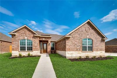 Glenn Heights Single Family Home For Sale: 606 Roaring Springs Drive