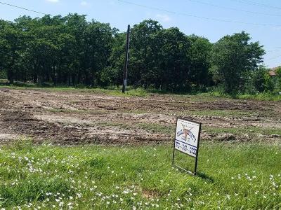 Aubrey Farm & Ranch For Sale: 5045 Us Highway 377 S