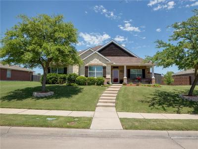 Rockwall Single Family Home For Sale: 3804 Chestnut Trail