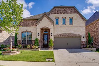 Irving Single Family Home For Sale: 3831 Wind Cave Bend