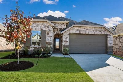 Little Elm Single Family Home For Sale: 1724 Spoonbill Drive