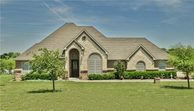 Aledo Single Family Home For Sale: 111 Scenic View Drive