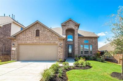 McKinney Single Family Home For Sale: 916 Hodge Street