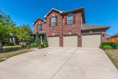 Lewisville Single Family Home For Sale: 707 Marina Vista Drive