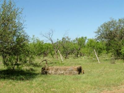 Brownwood Farm & Ranch For Sale: 2005 County Road 134