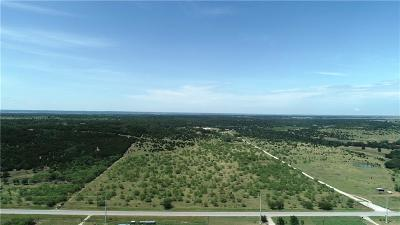 Parker County, Hood County, Palo Pinto County, Wise County Farm & Ranch For Sale: Fm 254