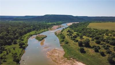 Palo Pinto Farm & Ranch For Sale: Tbd New Hope Road