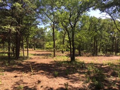 Residential Lots & Land For Sale: Tbd County Rd 258