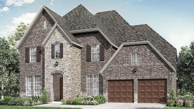 Allen Single Family Home For Sale: 907 Marie Drive