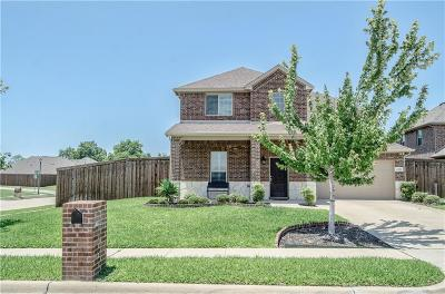 Rowlett Single Family Home For Sale: 4801 Stacy Court