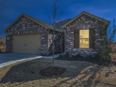 Single Family Home For Sale: 641 Fox Creek Trail