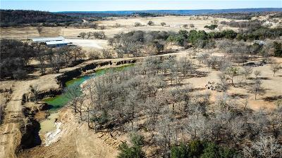Santo Farm & Ranch For Sale: 13273 Hwy 281