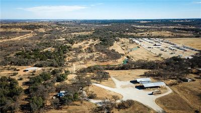 Parker County, Hood County, Palo Pinto County, Wise County Farm & Ranch For Sale: 13273 Hwy 281