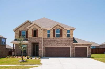 Parker County Single Family Home For Sale: 15025 Stargazer