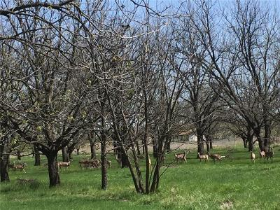 Comanche County Farm & Ranch For Sale: 00 S Elm Street